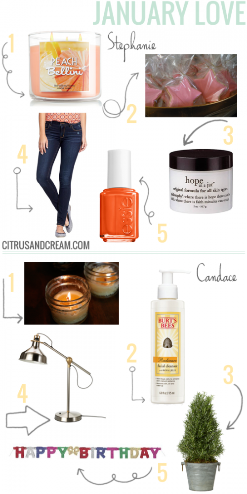Our Favorites: January Edition