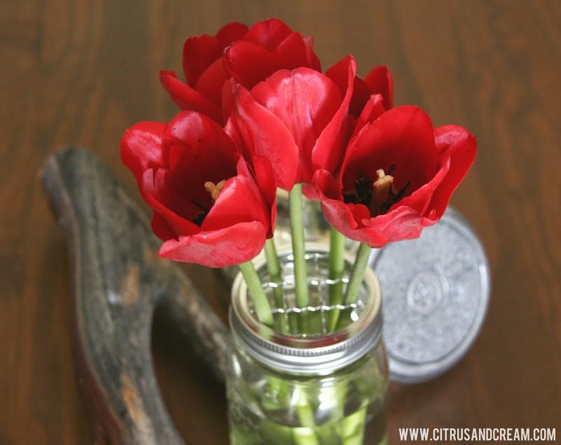 tulips in frog