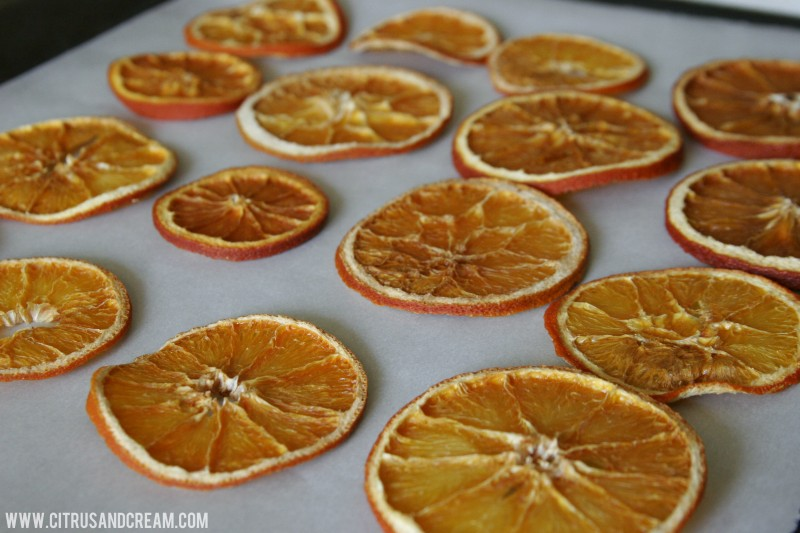 Citrus Rounds on Parchment
