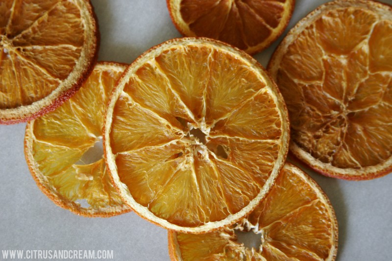 Dried Citrus Rounds From Top