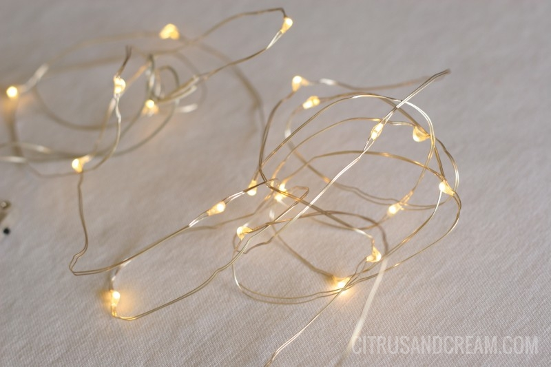 Terrarium Filler: String Lights